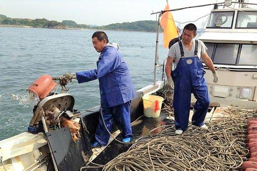 タコツボ漁をする窪田さん