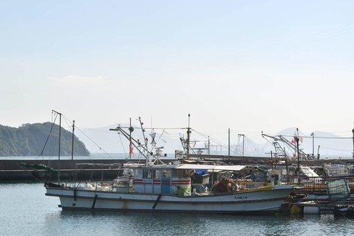 小阪漁港に停泊する窪田さんの漁船